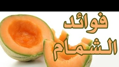 Photo of فوائد الشمام