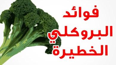 Photo of فوائد البروكلي