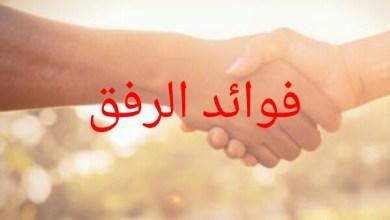Photo of فوائد الرفق
