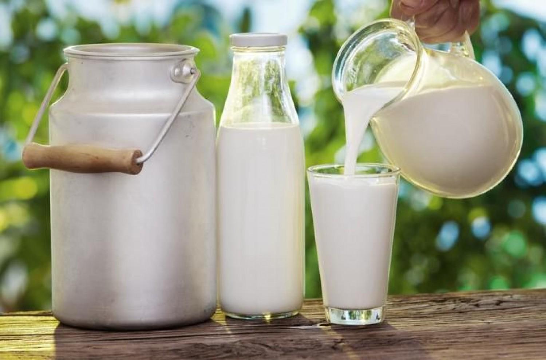 فوائد الحليب