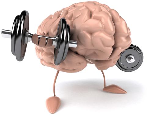 قوة الدماغ