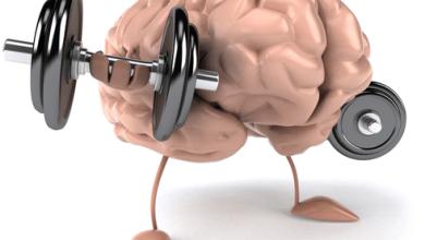 Photo of قوة الدماغ