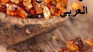 Photo of فوائد الصمغ العربي