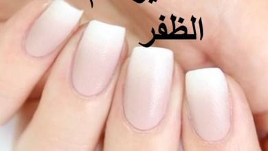 Photo of تفسير حلم الظفر