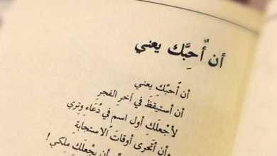 Photo of شعر الحب , اجمل ابيات شعر عن الحب والغرام