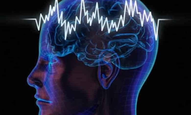 Photo of علاج الشحنات الكهربائية في الرأس بالأعشاب