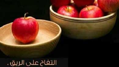 Photo of فوائد التفاح على الريق