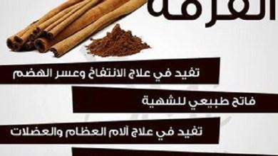 Photo of فوائد القرفة