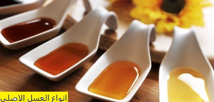 Photo of انواع العسل الاصلي , كيف التمييز بين العسل الأصلي من المغشوش