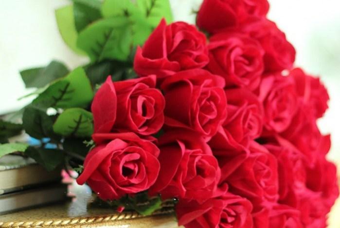 Photo of صور ورد جميل , اجمل الصور الورود الطبيعية