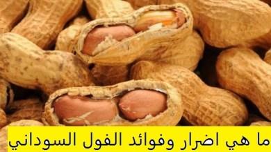 Photo of أضرار الفول السوداني , فوائد الفول السوداني للجسم