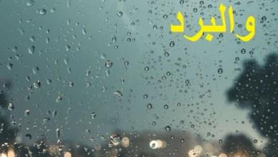 Photo of سناب عن البرد , صور سنابات الشتاء والبرد