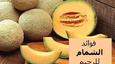 Photo of 7 فوائد من أهم فوائد الشمام للرجيم