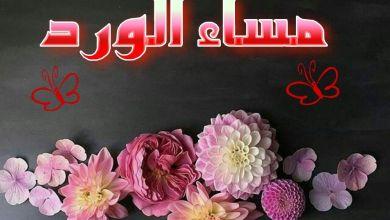 Photo of اجمل مساء على الحلوين , مساء النور و الجمال