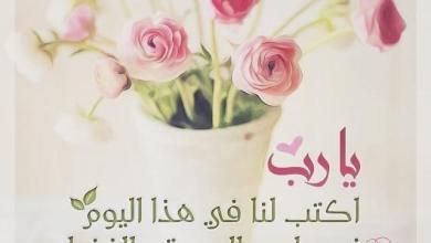 Photo of صباح الخير وكل الخير , صور مبهجة للصباح