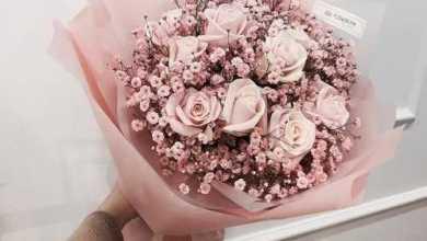 Photo of صور بوكيه ورد ملون , اجمل بوكيهات الورد الرائعه
