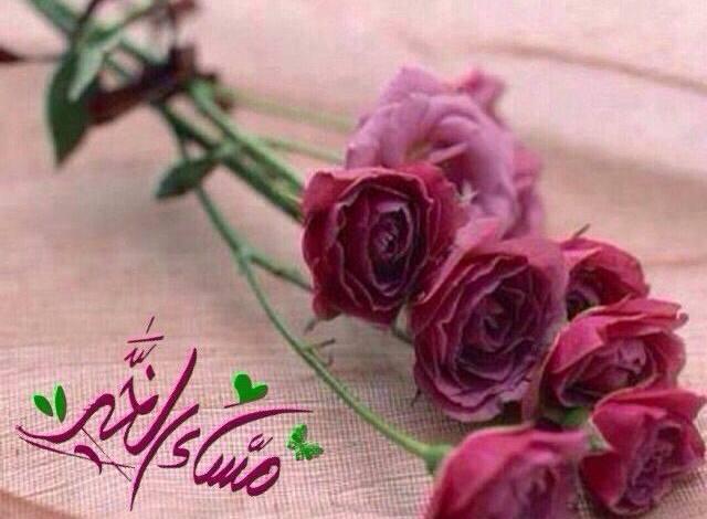 Photo of صور مساء الجمال , أجمل مساء لأجمل ناس