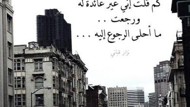 Photo of قصيدة حب للحبيب , اجمل قصيدة للحبيب كلها مشاعر جميلة