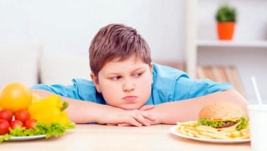 Photo of أهم 4 أسباب لبدانة الأطفال