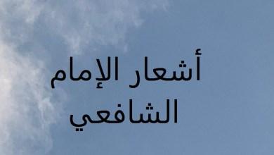 Photo of أشعار قالها الإمام الشافعي