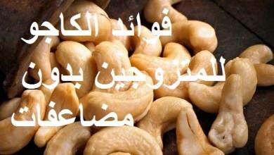 Photo of فوائد الكاجو للمتزوجين بدون مضاعفات