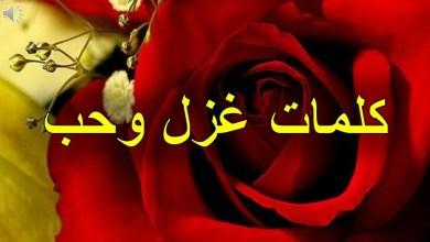 Photo of أجمل كلمات الغزل ووصف الحبيب
