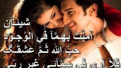 Photo of صور للحبيب واجمل العبارات عليها ولا اروع