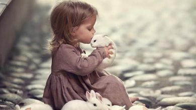 Photo of تأثير الحيوانات الأليفة على سلوك الطفل