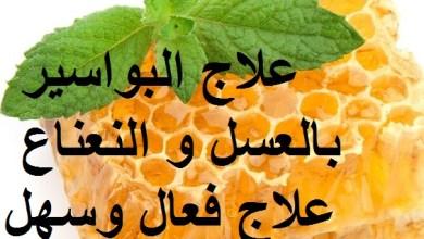 Photo of علاج البواسير بالعسل و النعناع علاج فعال وسهل