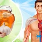 فوائد الثوم للجسم