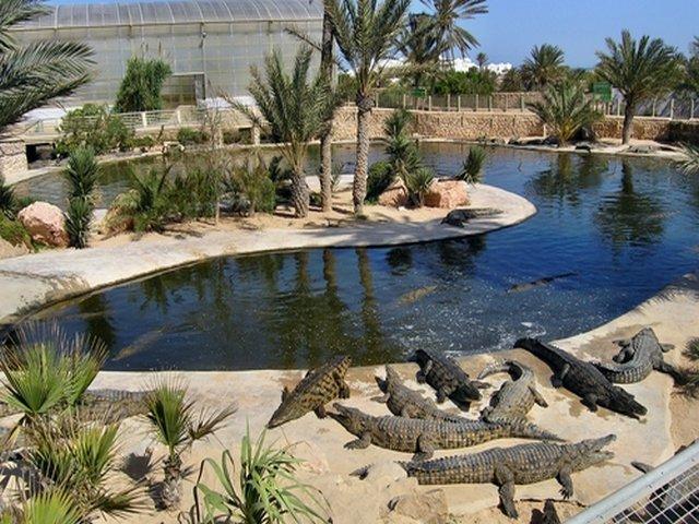 أجمل 7 حدائق و متنزهات شهيرة في دبي .