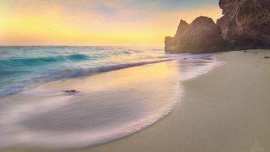 Photo of أجمل 4 شواطئ مرجانية و رملية في جزيرة الفرسان بجازان