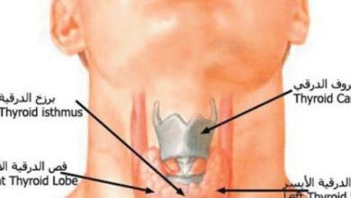 Photo of 3 أعراض تؤكد وجود خلل في الغدة الدرقية النفسية