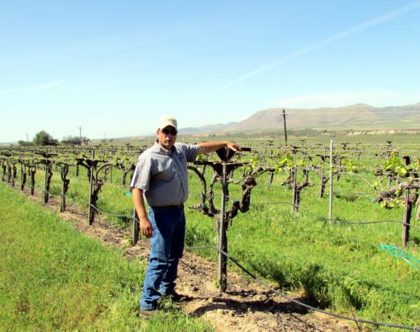 Viticulturalist Jim Stollberg with 40-year-old vines at Riverbench