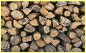 RJS Tree Service - Fire Wood