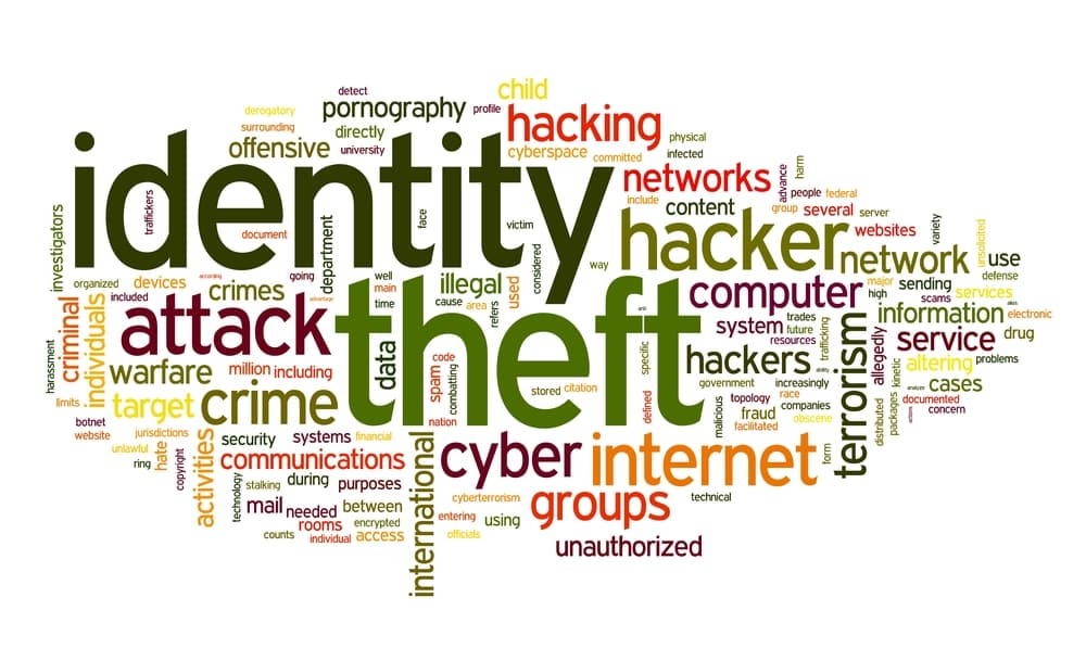 RKN Global's Ronald Noble: Identity Theft Victim Statistics Should be a Wake-up Call