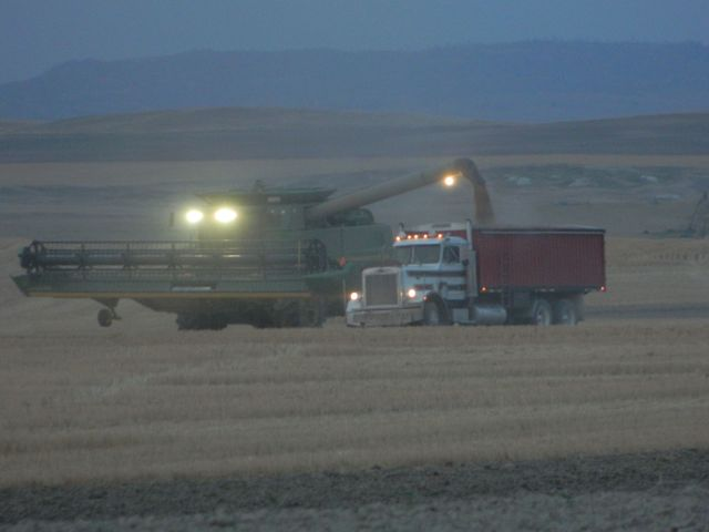 Harvesting wheat at night in Western Nebraska