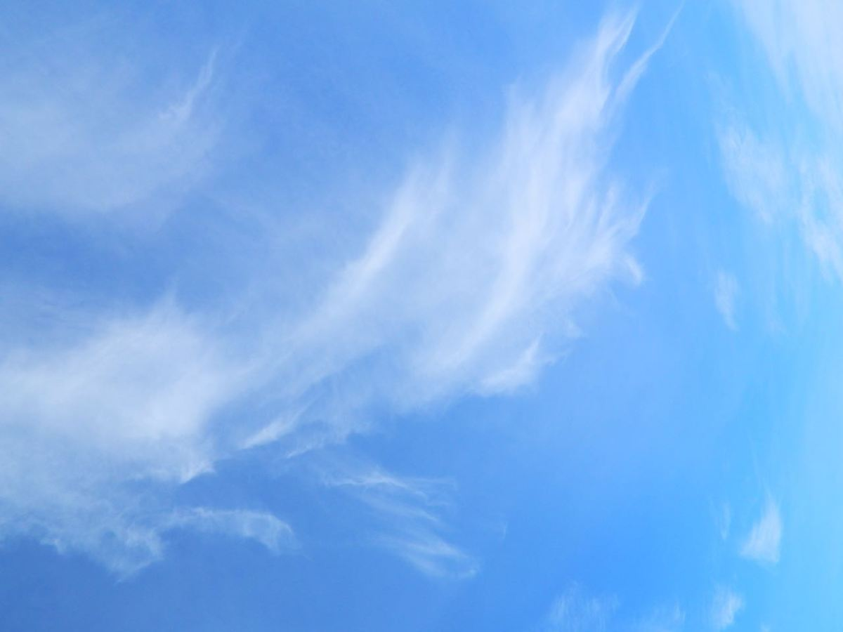 Blue spring sky with horsetail cirrus clouds caught in the high wind.