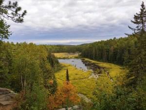 Algoquin NP: Beaver Pond Trial