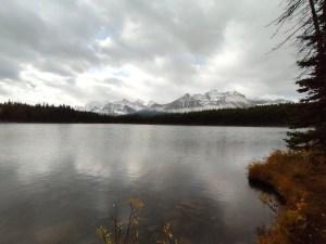 Lake Herbert Aussicht