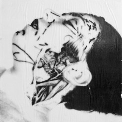 """Vanity"" 12x12 by Artist R.L. Gibson"