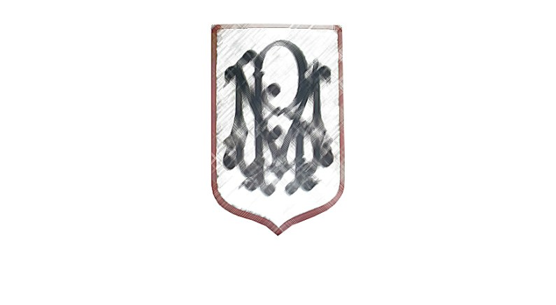 Escudo RMCV