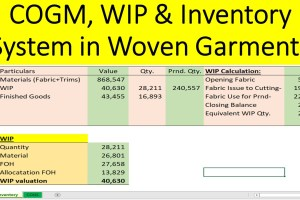 COGM & WIP