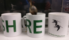 RMRG coffee mugs
