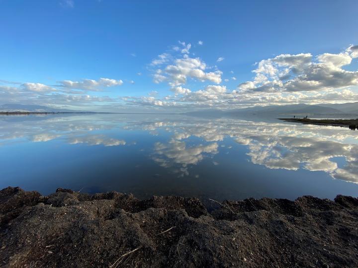 The Wairarapa Moana wetlands in south Wairarapa