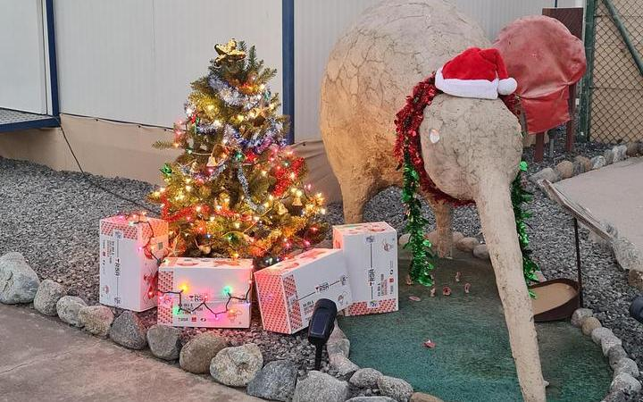 A small group of NZDF personnel are in the Middle East providing logistics support to NZDF missions in the region, and have been looking forward to opening their RSA Christmas parcels.