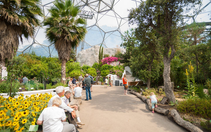 Eden Project visitors inside one of gaint domes Mediterranean Biome featuring plants from that region
