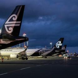 Air NZ rehiring: cabin crews still feeling stress of job losses, union says