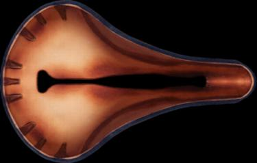 Selle Anatomica X laminate.web