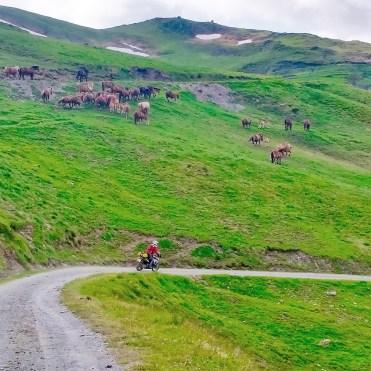 Da Aínsa-Sobrarbe e Salardú sterrati in moto sui Pirenei